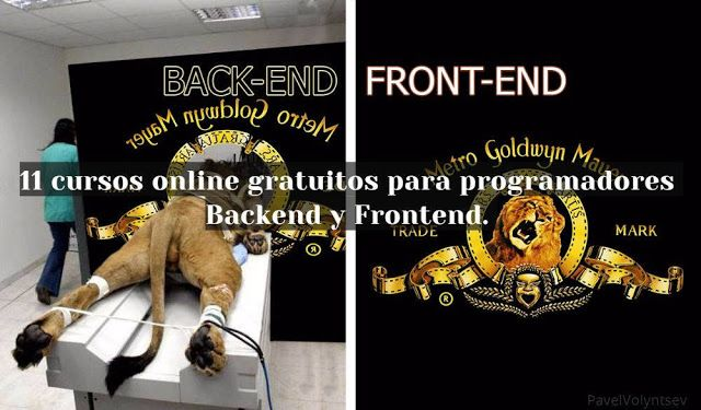Programadores Backend y Frontend